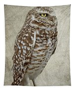 Burrowing Owl Portrait Tapestry