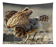Burrowing Owlet Workout Tapestry