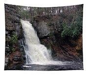 Bushkill Falls Tapestry
