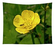 Buttercup Hospitality Tapestry
