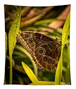 Butterfly 25 Tapestry