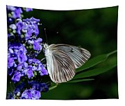 Butterfly And Flower Tapestry