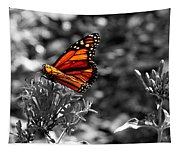 Butterfly Color On Black And White Tapestry