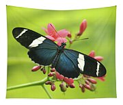 butterfly in Square Tapestry