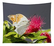 Butterfly On Magenta Flower Tapestry