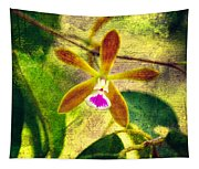 Butterfly Orchid - Encyclia Tampensis Tapestry