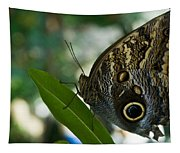 Butterfly Sitting Tapestry
