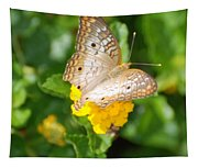 Butterflywith Dots Tapestry
