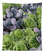 Cabbage Patch Tapestry