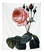 Cabbage Rose Tapestry