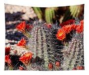 Cactus Bloom 033114f Tapestry