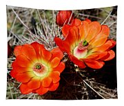 Cactus Flower Twins Tapestry