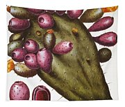Cactus: Opuntia, 1613 Tapestry