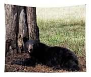 Cades Cove Bear Tapestry