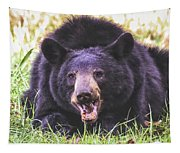 Cades Cove Black Bear Tapestry