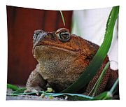 Cain Toad Tapestry