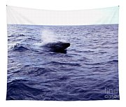 California Blue Whale Tapestry