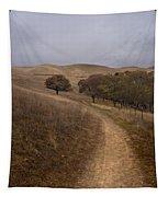 California Winter Tapestry
