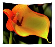 Calla Lily II Tapestry