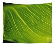 Calla Lily Leaf Tapestry
