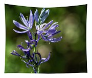 Camas Passages Tapestry