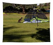Camping With Swamp Wallaby Tapestry