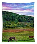 Canaan Valley Evening Tapestry