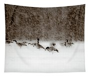Canada Geese Feeding In Winter Tapestry