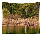 Canada Goose Couple Tapestry