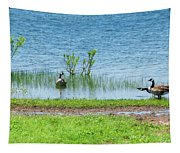 Canadian Geese - Wichita Mountains - Oklahoma Tapestry