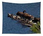 Canada Goose Family Line-up Tapestry