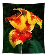 Cannas With Dew Tapestry