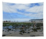 Cannon Beach Tide Pools Tapestry