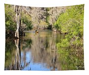 Canoing On Hillsborough River Tapestry