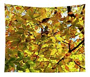 Canopy Of Autumn Leaves  Tapestry