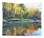 Canyon Autumn 2 Tapestry