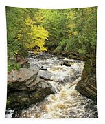 Canyon Falls Tapestry