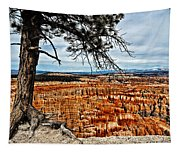 Canyon Overlook Tapestry