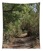 Canyon Path I Tapestry