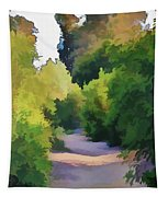 Canyon Path IIi Painterly Tapestry