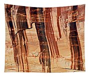 Canyon Textile Design Tapestry