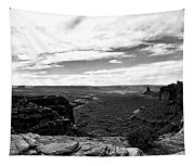 Canyonlands National Park Utah Pan 06 Bw Tapestry