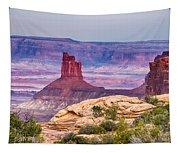 Canyonlands Utah Views Tapestry