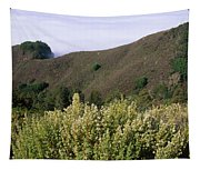 Canyons And Clouds Tapestry