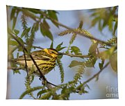 Cape May Warbler Tapestry