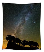 Caprock Canyon Bison Stars Tapestry