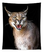 Caracal Hissy Fit Tapestry