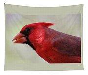 Cardinal Closeup D-bn2 Tapestry