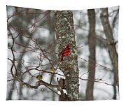 Cardinal In Snow Storm Tapestry