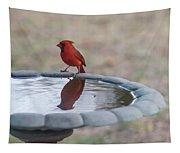 Cardinal Reflection Tapestry